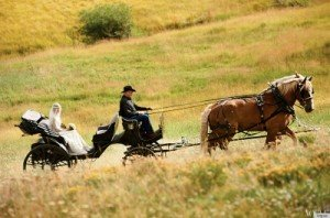 Bride Lauren Bush rides in a horse-drawn carriage, driven by an Old West cowboy
