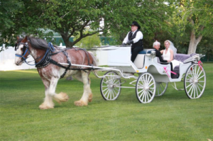 horse-drawn carriage with bride and father