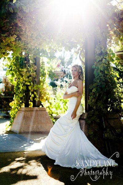 The Springs Preserve Inspires a Whimsical Wedding Dream Come,TrueBowties Bridal and Tuxedos David's Bridal Culinary Arts Catering Current Events Rentals Enchanted Florist Hair'z Melinda Images by EDI Jovani Linens and Floral Design Kandylane Photography KMH Photography Paper and Home The Springs Preserve