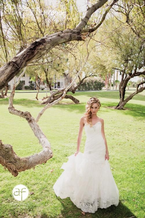 Bridal Spectacular_Adam Frazier-Casa De Shenandoah-Tristin_02