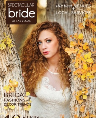 Click Here to Read  Spectacular Bride  Vol 24