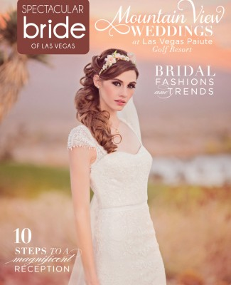 Click Here to Read | Spectacular Bride