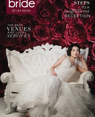 Spectacular Bride Vol 27-3 Click Here to Read