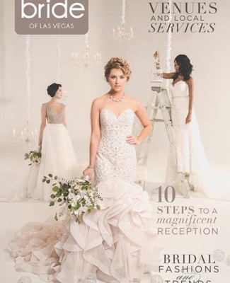 Click Here to Read Spectacular Bride Vol 27-2