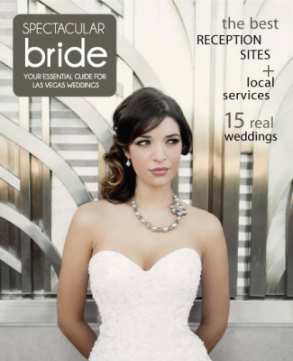 Click Here to Read Spectacular Bride Vol 23-2