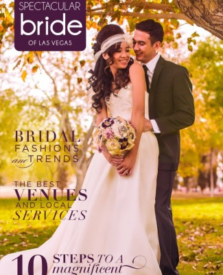 Click Here to Read Spectacular Bride Vol 25-2