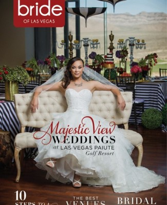 Click Here to Read Vol 26 Spectacular Bride #4