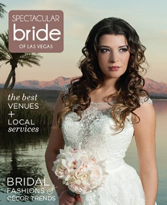Click Here to Read Spectacular Bride Vol 24-1