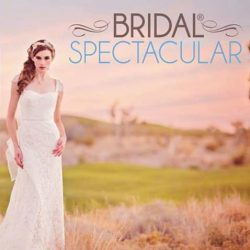 Plan Your Dream Wedding This Weekend at the Winter Bridal Spectacular Show