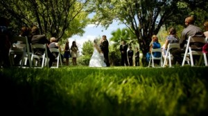 The Grove Almond Orchard Ceremony