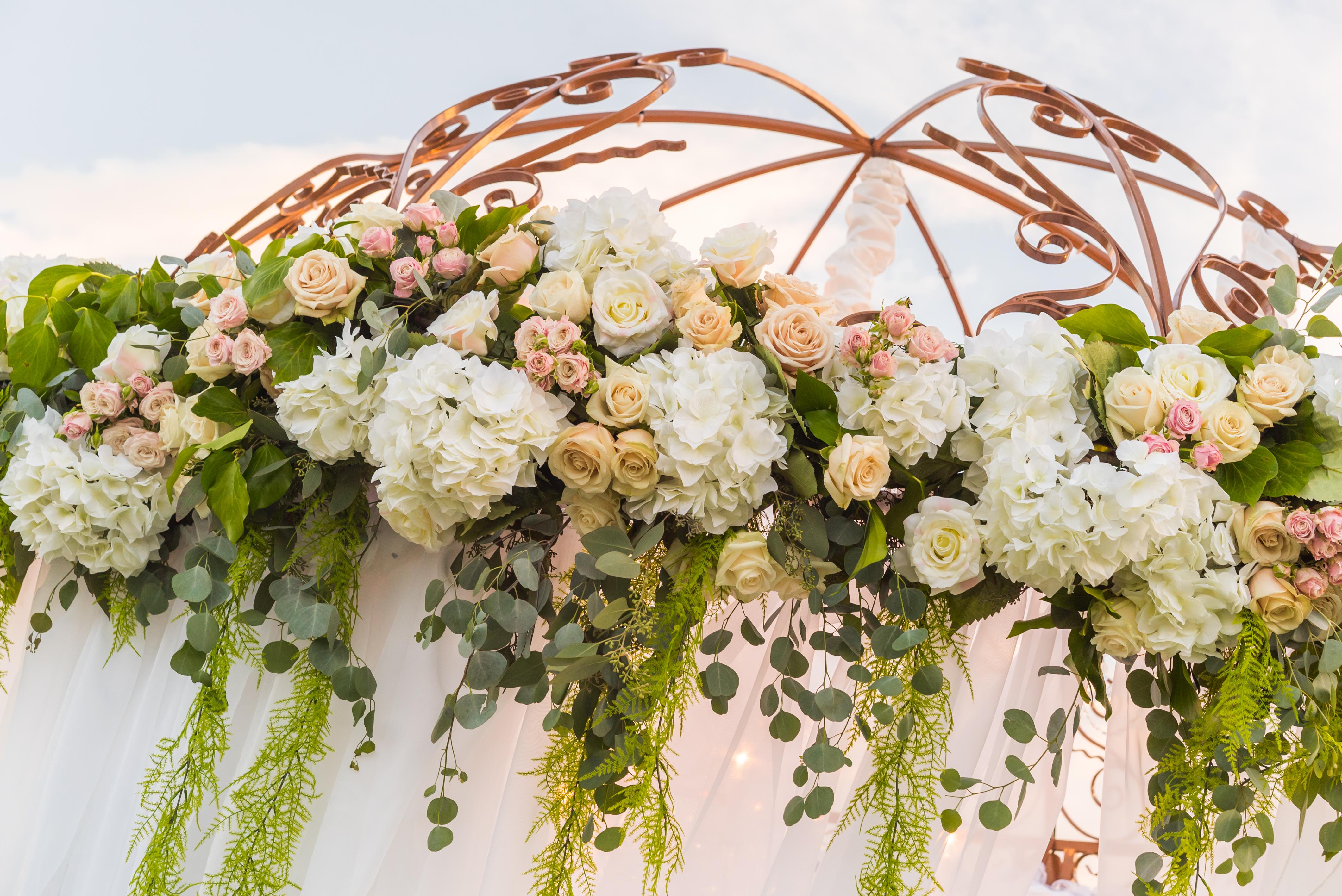 Bridal Spectacular_EGS_BearsBest-64