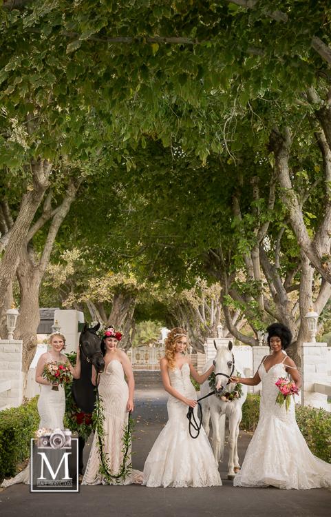 Bridal Spectacular_MPlace-Casa-4Models