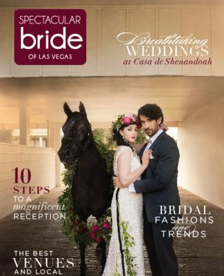 Click Here to Read Spectacular Bride Vol 28
