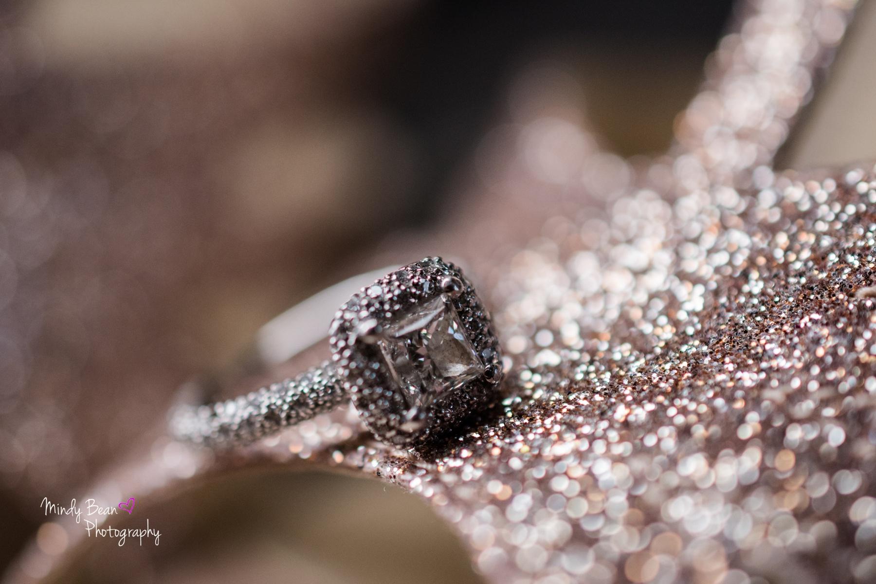 Bridal Spectacular_Mindy Bean_Christina & Aaron_09