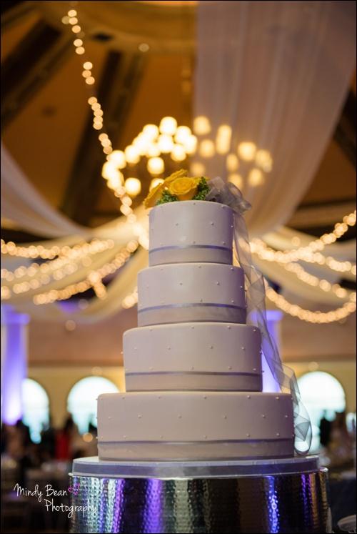Bridal Spectacular_Mindy Bean_Christina & Aaron_12