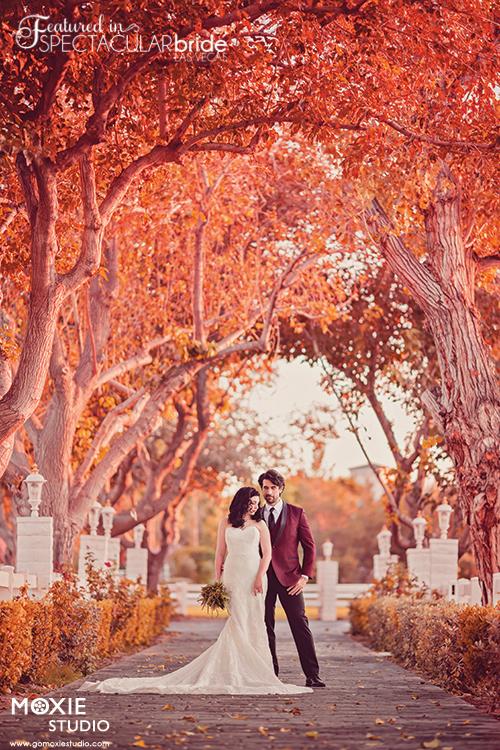 Bridal Spectacular_Moxie Studio-Casa-Zelda Nathan-31-2-mb-blog0106