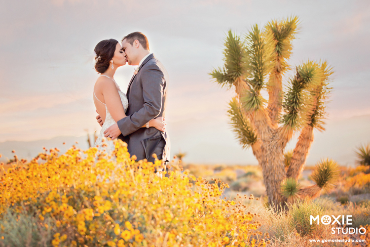 Bridal Spectacular_Moxie Studio at Las Vegas Paiute_Alyssa & Tyson_01