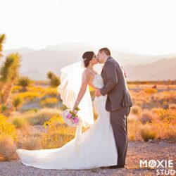 Moxie Studio Shares Alyssa and Tyson's Elegant Spring Wedding at Las Vegas Paiute Golf Resort
