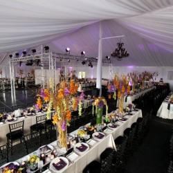 Bridal Spectacular Spotlight: Current Events