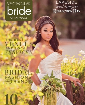 Click Here to Read Spectacular Bride Vol 25-1