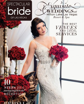 Click Here to Read Spectacular Bride Vol 26-3